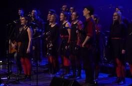 Musique du monde : La marmite à Roselyne - MÉSANGER