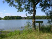 L'étang de la Provostière