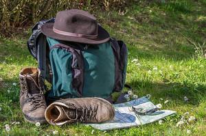 Organiser et développer l'offre touristique